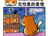 雷!毛毛猫系列四格漫画